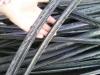 黑白夹心交联PE电缆皮粉碎料