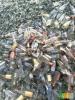 废玻璃,啤酒瓶玻璃,玻璃块,炉底料