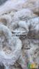 破籽棉,纯棉扫地花,斩刀花,脏棉,纯棉回丝,新疆不孕子