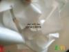 奶白PVB夹胶