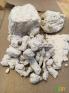 供应造纸厂纸浆
