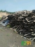供应旧模板木方