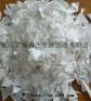 供应PP白色吸塑片粉碎料
