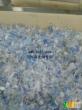 供应PET瓶片(纯白、蓝白、三色)
