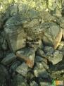 铝镁尖晶石