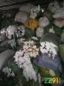 服装布碎浅色布碎,白色开花布碎,纯棉布碎
