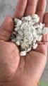 白色PP板材粉碎料