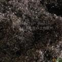 纯钛屑(Ti1,Ti2)