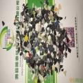 塑料静电分离机  塑料材质分选机 混合塑料静电分选机