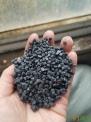 HDPE油桶颗粒