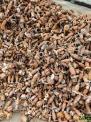长期大量回收铜转子