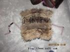 旧狐狸貉子,毛领,毛条