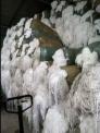 纺织厂下脚料绞边丝