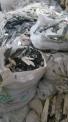 废锆,陶瓷表壳,陶瓷表,氧化锆废料,氧化锆陶瓷刀