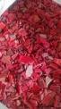 供应HDPE红色啤酒箱破碎料