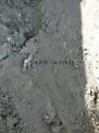 水箱铜锡渣,铅锡合金,锡灰等...含锡料