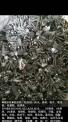含钴块料、削子   合金数控刀片  高速钢成品半成品废料
