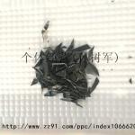 黑色PP破碎料(直接上机做片材)