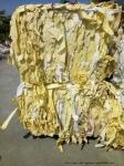 黃白淋膜紙