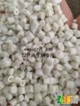 PP乳白片造粒(120目网、韧性好、拉丝好)