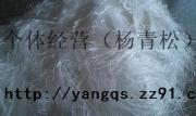 化纤废丝,涤纶废丝