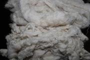 化纤废丝、涤纶废丝