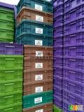 求购HDPE周转箱,啤酒箱,饮料箱,钱箱,托盘,垃圾桶,兰桶破碎料