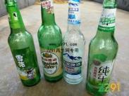 供应青岛纯生、雪花、哈尔滨、青岛等多款玻璃瓶
