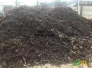 供应废铁,废铝,铜沙