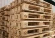 求购木托盘