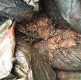 求购求购铜泥、铜渣、铜皮等含铜废料