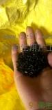 供应黑色60目 含钙30以内EVA下沉颗粒