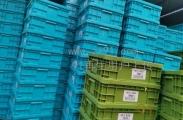 求购HDP压低压注塑料及PP工丙模盒料