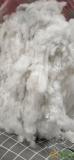 求购旧丝棉,纯棉花,古棉,旧棉被,被子棉等