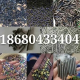 求购废钴合金,氧化钴,钴粉,钴渣,钴锭,含钴废料,钴价格