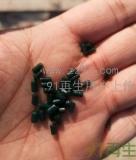 供应HDPE墨绿色一级渔网颗粒