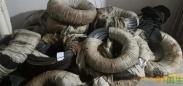 供应床垫用弹簧钢丝