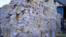 pe coated paper(PE淋膜纸)