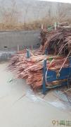 供应废覆铜板边