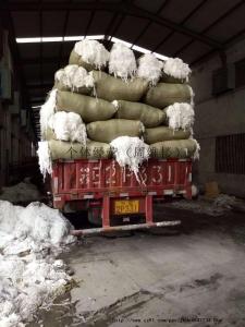 供应再生棉开花料