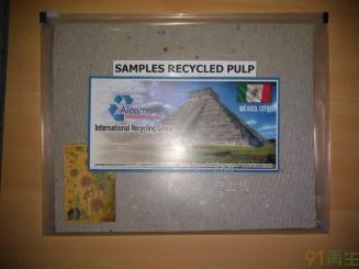 供应OCC#12废纸浆板
