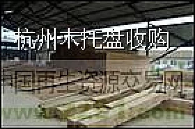 求购木材_木材图片相册-zz91再生网
