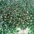 废玻璃绿色瓶料