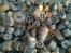 合金钢、模具钢、不锈铁 p91、P92、3Cr2W8V、H13